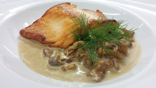 gebratener Schottischer Lachs auf Pfifferlingen á la créme mit Nudeln und Salaten